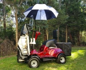 IM4 Golf Cart